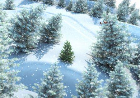 Недорогие живые ёлки в Чехове можно будет получить с 20 декабря