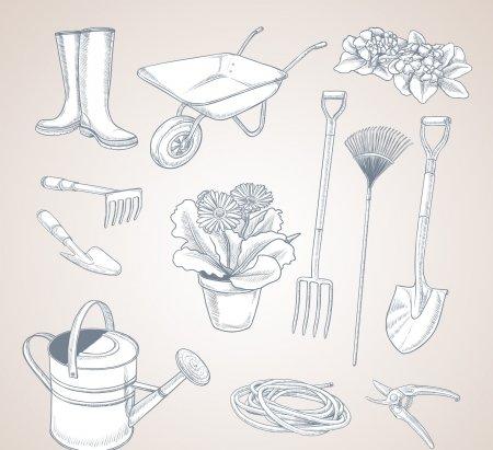 Что делать в саду в ноябре по Лунному календарю садовода 2019 года