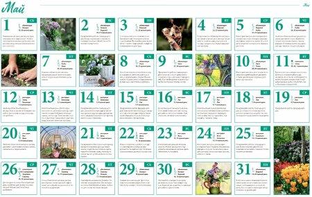 Лунный посевной календарь садовода, цветовода и огородника на май 2021 года